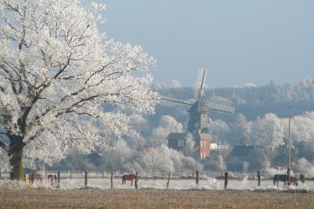 garlstorf-winter