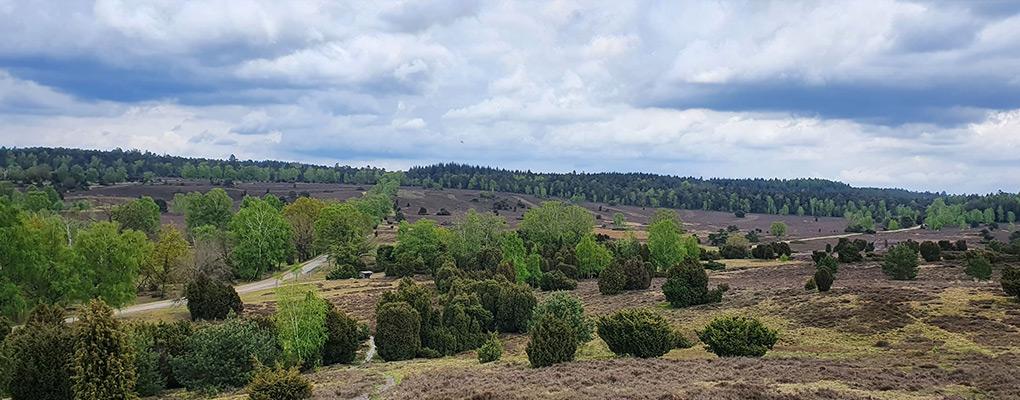haus-otte-heide-steingrund